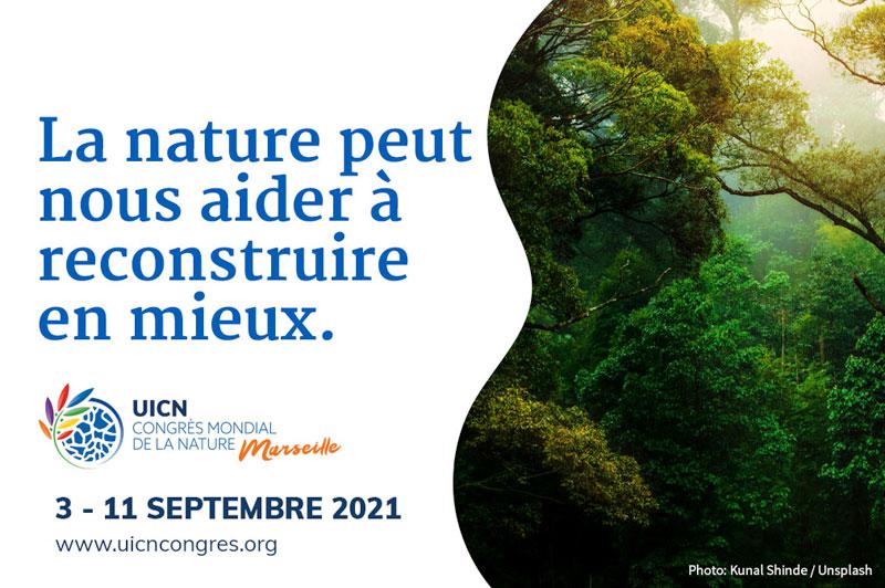Marseille accueille le Congrès mondial de la nature de l'UICN